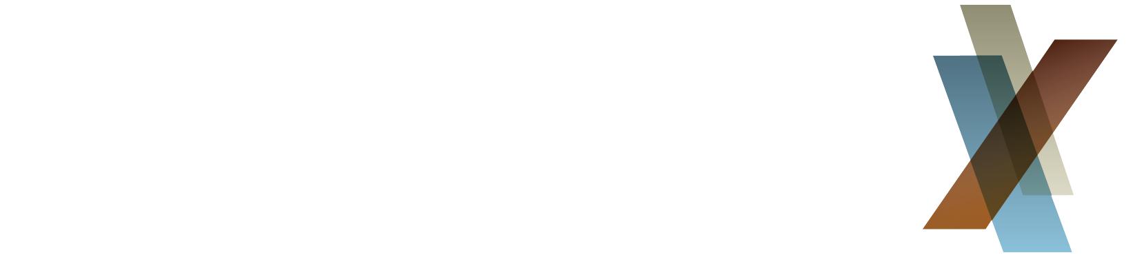 ColorMax Logo